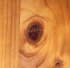 Types of Pine for Furniturethumbnail
